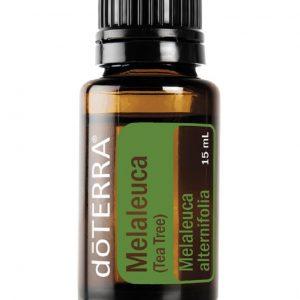 Melaleuca Oil